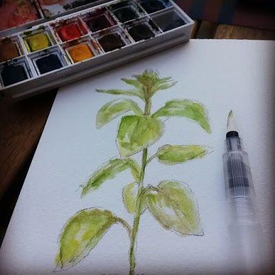Il progetto settimanale: piantina di Girasole pt.1/watercolor illustration