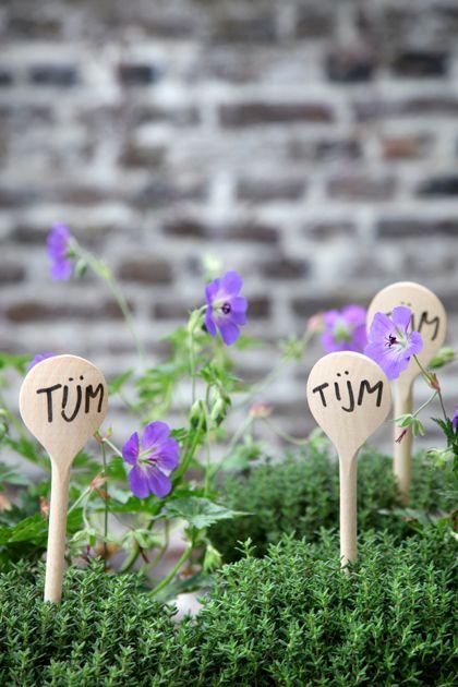 Plantenlabels zijn erg handig om planten te herkennen in de tuin. kun je ook met bestek en plat slaan en met stift op schrijven of met een kurk op een prikker en erop schrijven