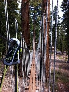treetop adventure park tahoe city, California $50 / person