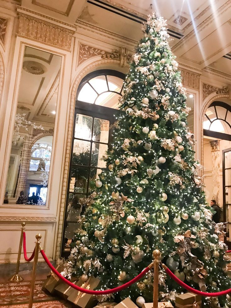 What To Do In Nyc At Christmas Time Cashmere Jeans In 2020 Christmas Tree Nyc Nyc Christmas Christmas
