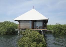 Paket Wisata bjbr (BEEJAY BAKAU RESORT) Kota Probolinggo adalah tempat wisata Hutan Bakau yang terletak di muara kali banger