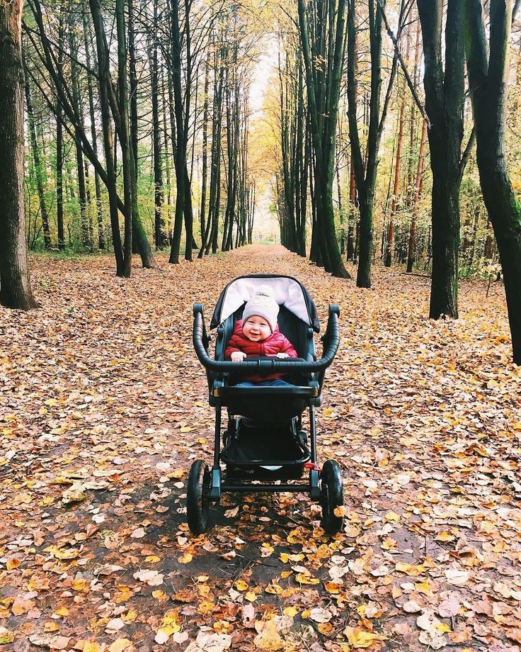 Fall wonders   #fall #autumn #nature #green #naturelovers #son #baby #babyboy #cutebaby #outdoors #happybaby #leaves #autumnleaves #stroll #stroller #pushchair #buggy #kinderwagen #cochecito #cochebebe #bebe #concord #concordwanderer #repost