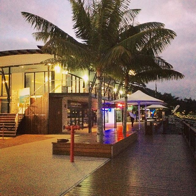 Our marina village is just stunning at night, on and off the water ✨🌴⛵️ #events #lurewhitsundays #whitsundays #marina #marinalifestyle #nightlife #night #yachtlife #sunsets #vibrant #vibe #yachts #lights #moonlight #party #celebration #stayplayexplore #venue #sundown #thisisqueensland #weddingswhitsundays #airliebeach #waterfront #unique