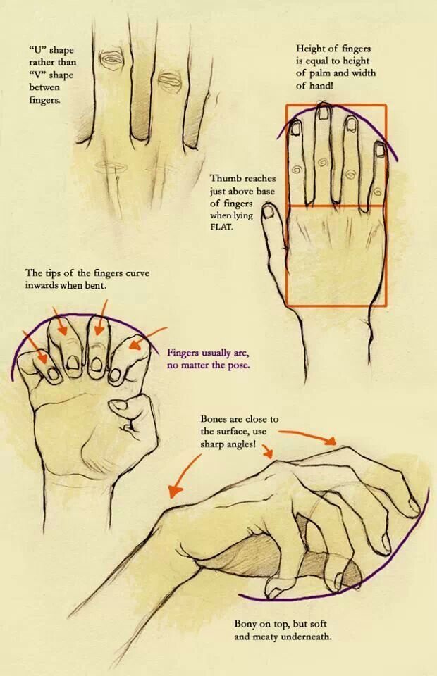 A Reference Chart To Help Teach How To Draw Fingers In Different Positions Drawing Fingers Hands Tea Hand Drawing Reference How To Draw Hands Drawing Tips