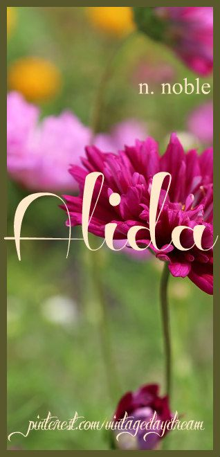 Baby Girl Name: Alida. Meaning: Noble. Origin: Dutch; German; Hungarian. https://www.pinterest.com/vintagedaydream/baby-names-by-me-vintagedaydream/?eq=baby&etslf=2846