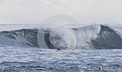 Surfing - Download From Over 26 Million High Quality Stock Photos, Images, Vectors. Sign up for FREE today. Image: 44970138