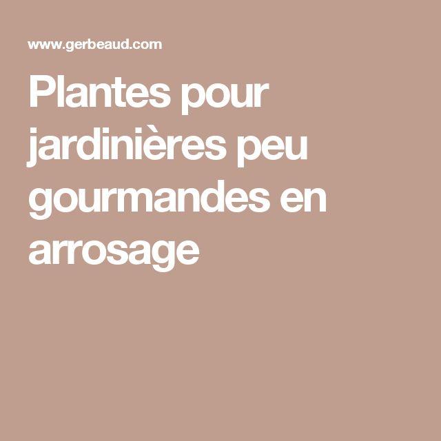 Plantes pour jardinières peu gourmandes en arrosage