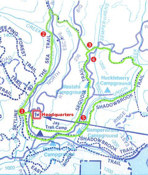 Big Basin Sequoia Trail Map   travel: NoCal   Pinterest   Trail maps ...