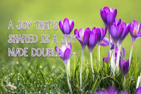 A joy that's shared, is a joy made double.  #joy #shared #double #quotes  ©The Gecko Said - Beautiful Quotes