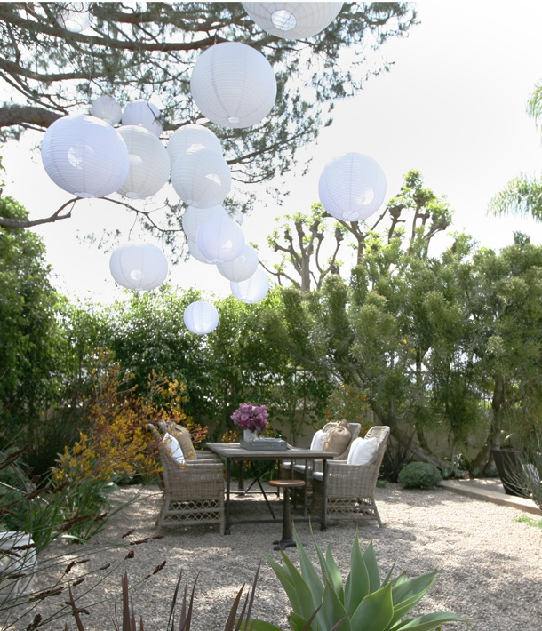 white paper lanterns hung high in a tree