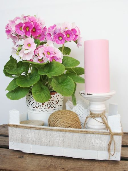 Kiste als Frühlingskorb