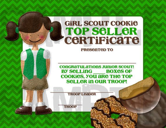 30 best images about girl scout awards on pinterest girl