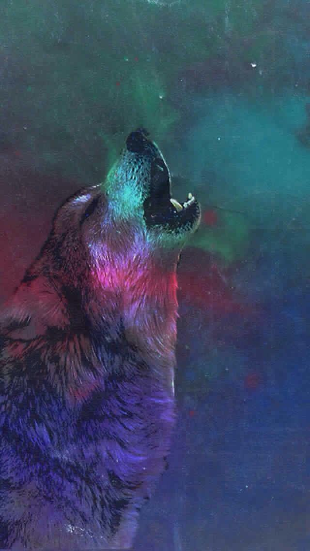 I Love Wolves 🐺 Wolf Wallpaper Iphone Wallpaper Wolf