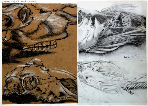 International GCSE Art Sketchbook: Coursework Project 98%
