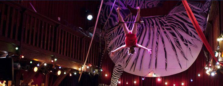 Le Zèbre : Cabaret parisien, dîner/spectacles, concerts, théatre, Cirque & jeune public | Cabaret Parisien : Le Zèbre de Belleville - Cabaret spectacle Cirque Paris : Le Zèbre de Belleville est un cabaret parisien et une salle de spectacles/concert qui vous propose de passer une soirée diner spectacle inoubliable
