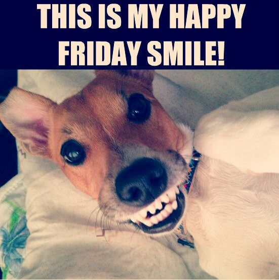 Its Friday Funny: Yay It's Friday...