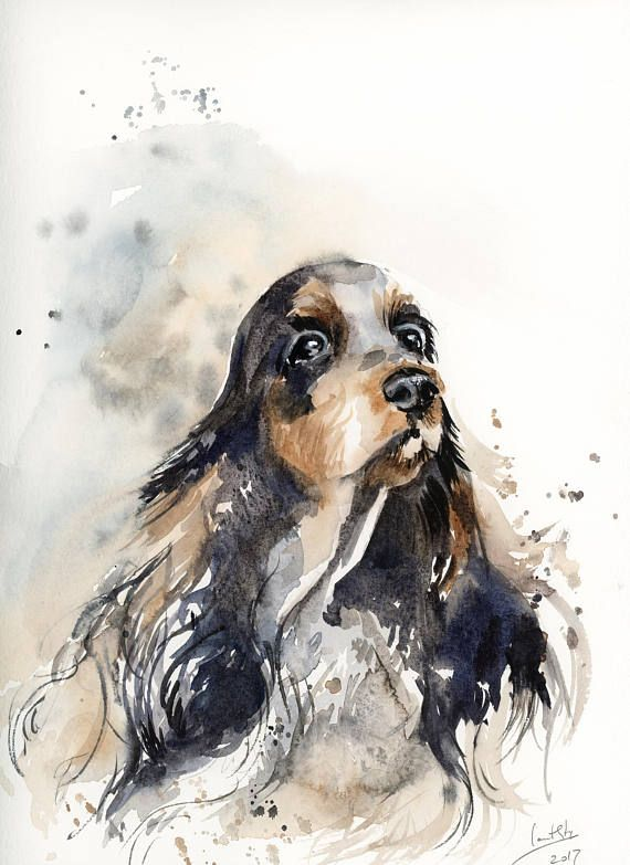 Dog Painting Cocker Spaniel Original Watercolor Painting Dog