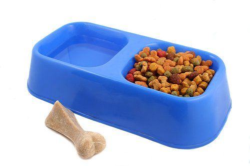 Diabetic Dog Food - What Should My Dog Eat Now? It's not easy, but with the basic knowledge you can create a balanced diet.