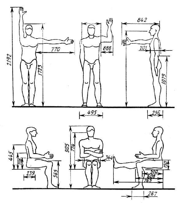 человеческий глаз угол зрения антропометрия схемы - Поиск в Google