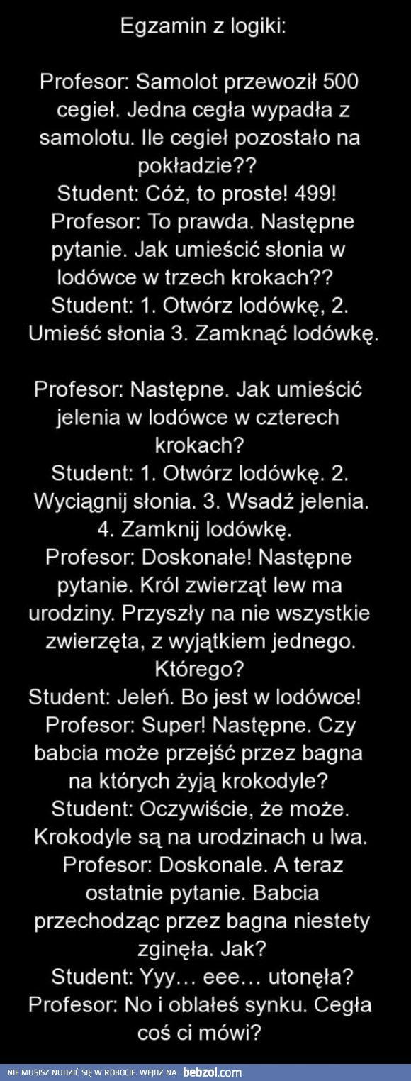 Egzamin z logiki | bebzol.com