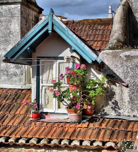 #Sintra, #Portugal #Portuguese_windows