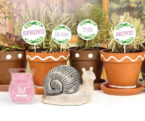 March Warmer Of The Month Garden Snail A Friendly Little Signal That Spring Is On The Move