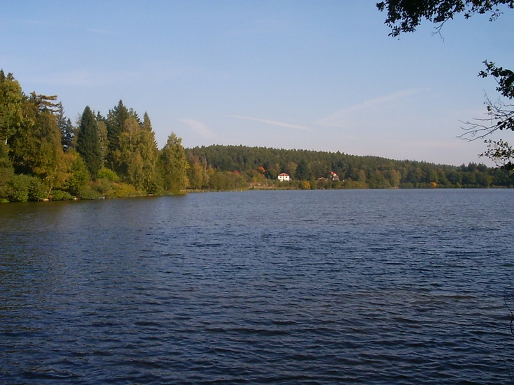 Pond Vyžlovský, Bohemia