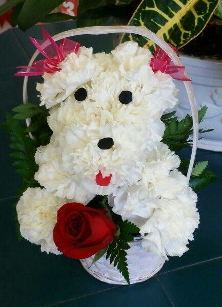 Little valentine's day puppy