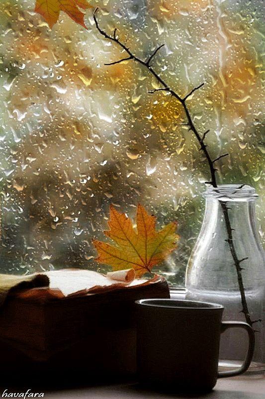 открытки дождливое утро осень оригинальной методикой