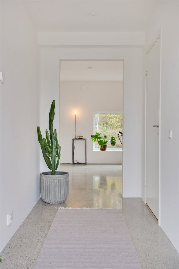 Polerad betongplatta (polished concrete floor). Fastighetsbyrån