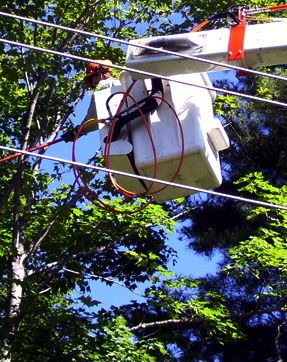 Tree lopper Services Perth - http://www.austree.com.au/ads/swaptrade/tree-lopper-services-perth/26630/