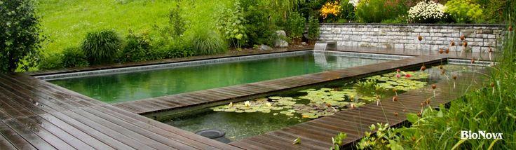 24 Best Swimming Pool Decks Images On Pinterest Swimming Pool Decks Pool Ideas And Backyard Ideas