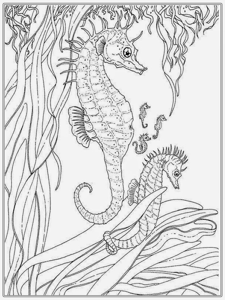 shallow tarnish coloring pages - photo#4