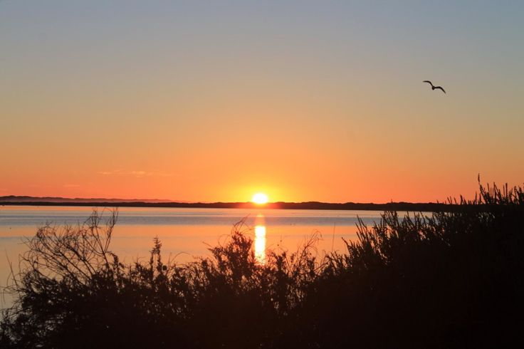 Sunrise @ the mouth of the Blackwood river, Augusta WA