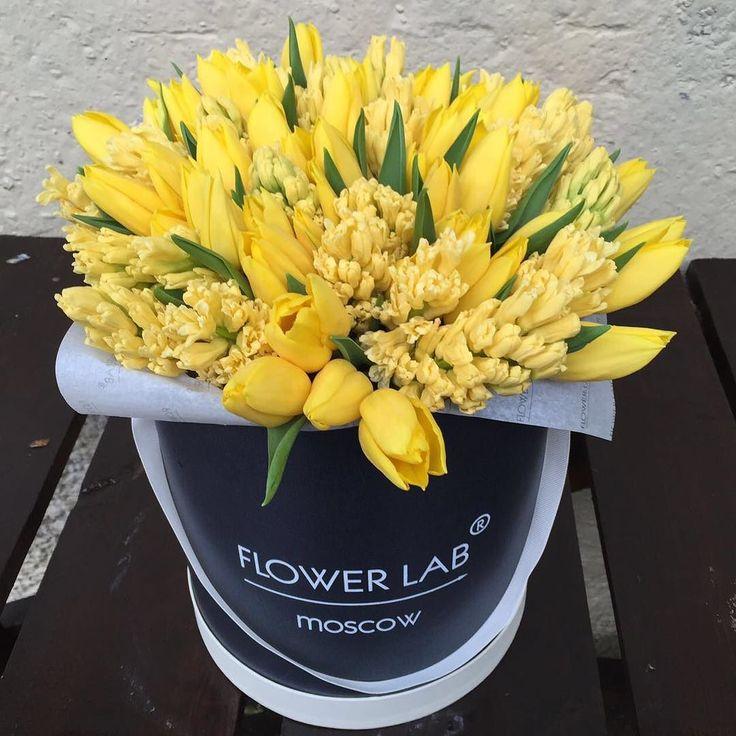 Гиацинты и тюльпаны! by labflower