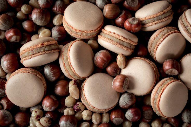 Macarons with white Valrhona chocolate ganache and roasted hazelnuts.