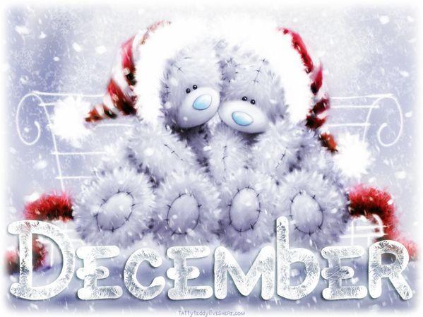 ♥Tatty Teddy♥ December