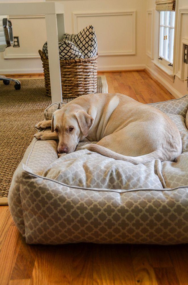 Comfy Big Bed Cool dog beds, Dog bed luxury, Dog bed large