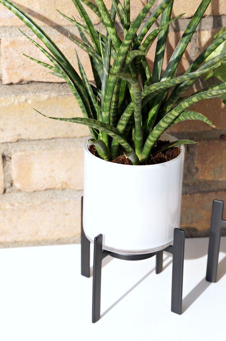 25 beste ideen over Plantenstandaard op Pinterest