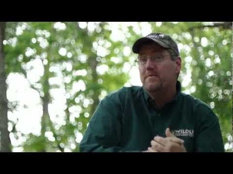 How to Maximize Your Deer Hunting Ground Blind Setup - Deer & Deer Hunting | Whitetail Deer Hunting Tips
