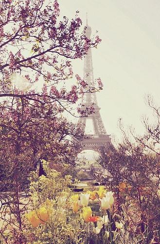 Paris in the spring ♥ #Paris #spring #Eiffel_tower