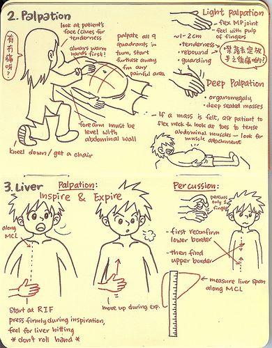 OSCE made easy… Illustrated! - Abdomen Palpation
