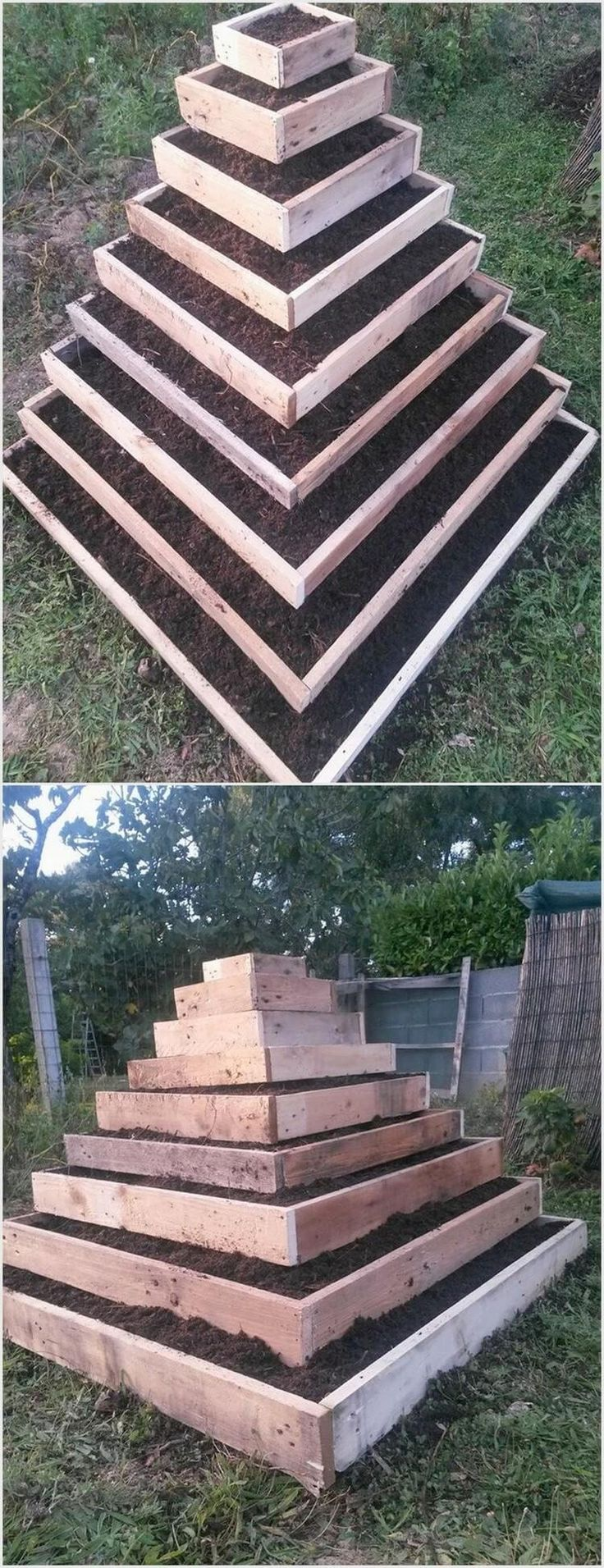 This is quite an innovative looking pallet gardening planter project that is much unique looking in first gaze. In this project you will view the pyramid form of the planters as each single planter has been beautifully filled with the mud. To make it look lovely you can add it up with colorful flowers too.