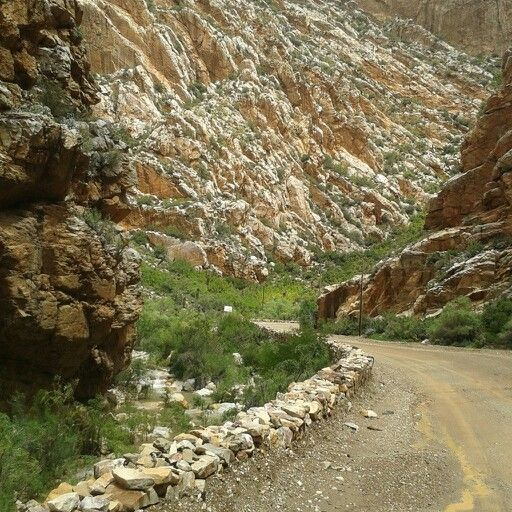 Swartberg Pass, Prince Albert, South Africa