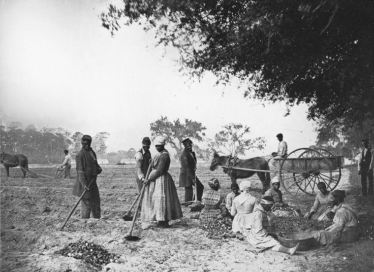 Slaves painting Gibi
