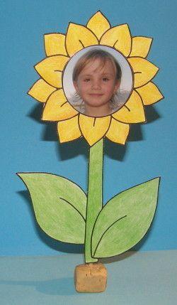 slunečnice s fotkou