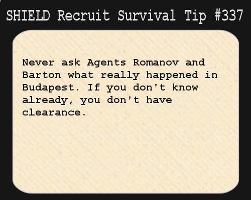 Survival Tips for S.H.I.E.L.D. Recruits, S.H.I.E.L.D. Recruit Survival Tip #337: Never ask...