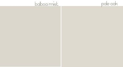 difference benjamin moore balboa mist and pale oak