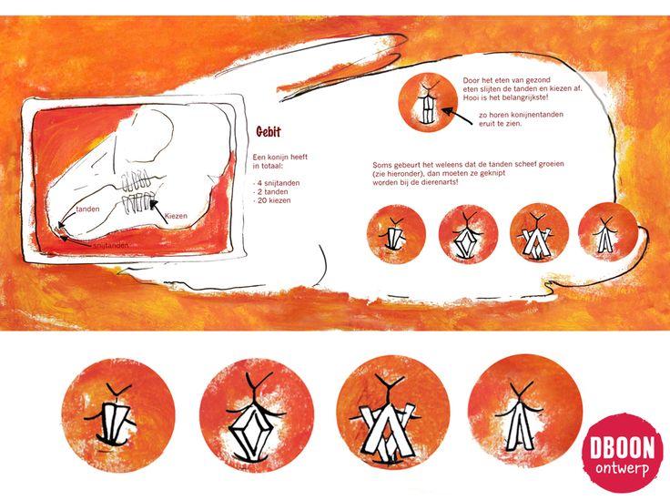 konijn - dboon ontwerp