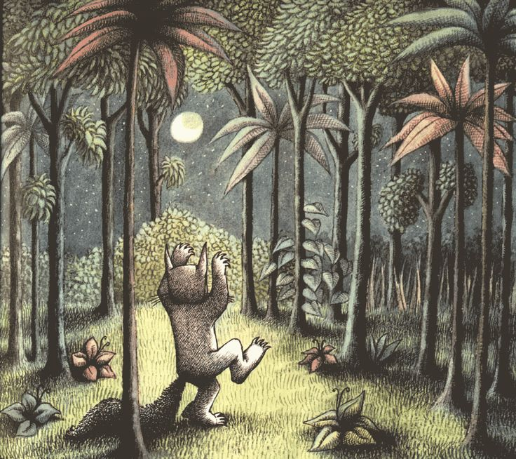 Every illustration in this book is sublime. Thanks, Maurice Sendak, for sharing your gifts.
